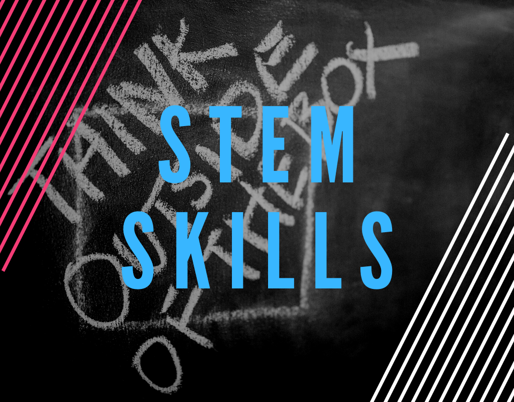 Read more about the article STEM Skills – What You Need To Know