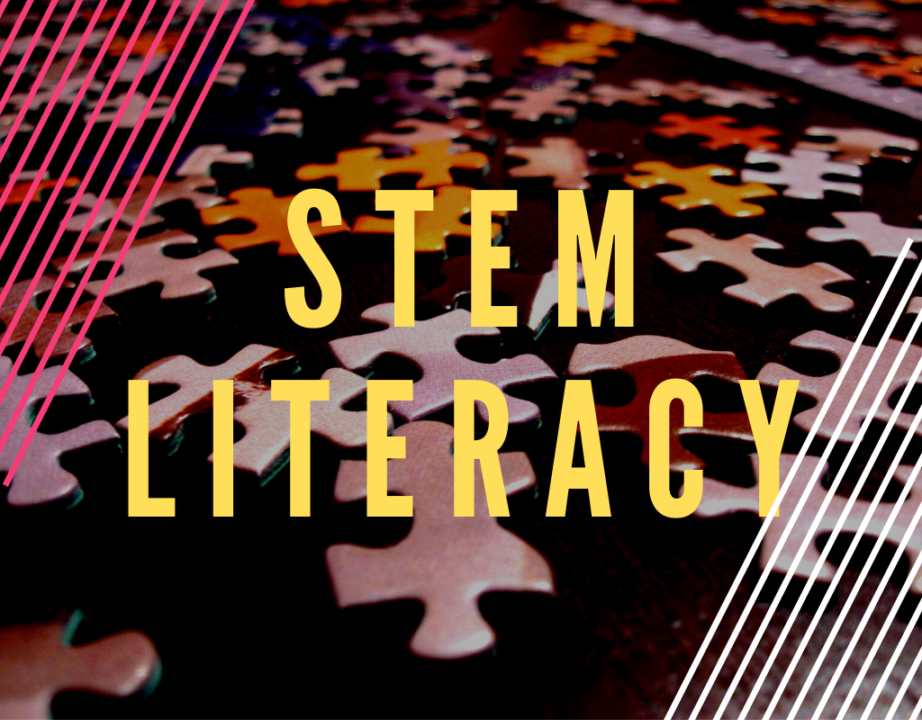Read more about the article STEM Literacy – What It Is and Why You Need It